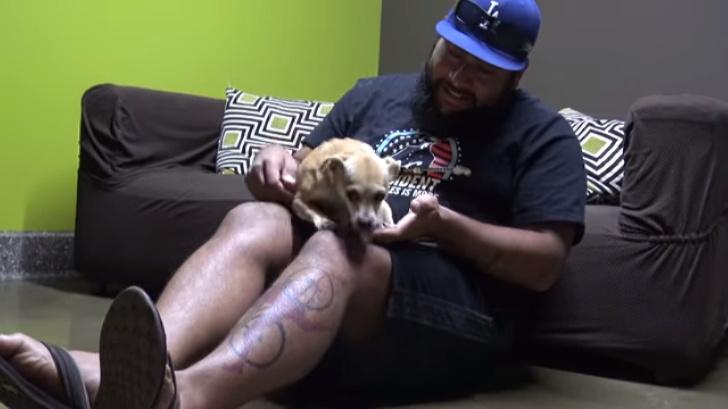 Волонтеры пытались спасти испуганную собаку. Затем они нашли еще кое-что!