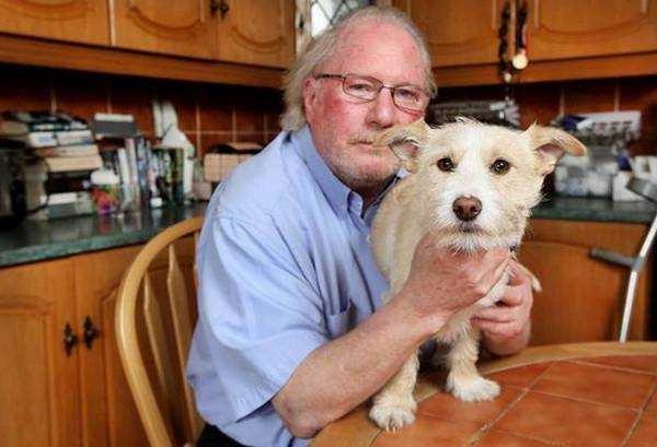 Мужчина впустил в свой дом бездомную собаку, и она его за это отблагодарила